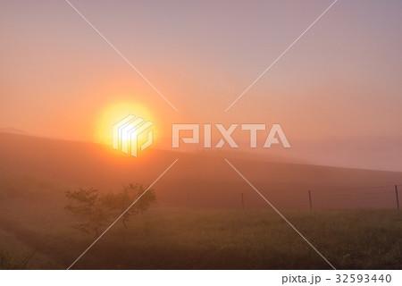 朝霧と太陽2 32593440