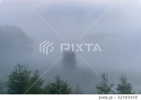 濃霧の丘 32593450