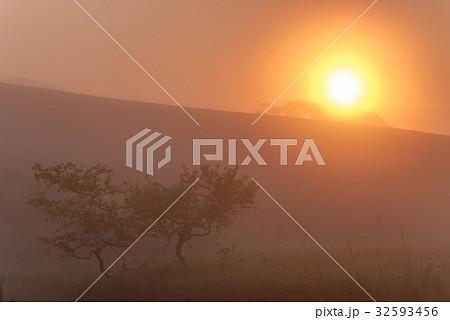 朝霧と太陽5 32593456