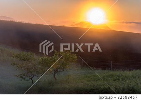 朝霧と太陽6 32593457