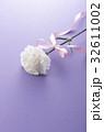 カーネーション 花 プレゼントの写真 32611002