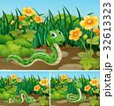 動物 ヘビ 蛇のイラスト 32613323
