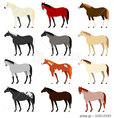 馬の毛色いろいろのイラスト素材...