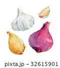 玉葱 パターン 柄のイラスト 32615901
