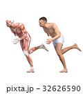 男性 解剖 筋肉 3DCG イラスト素材 32626590