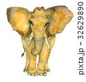 ぞう ゾウ 象のイラスト 32629890