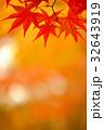 紅葉 もみじ 秋の写真 32643919