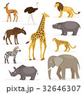 Set savanna animals. Vector Illustration 32646307