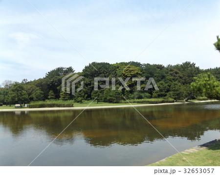 箱庭を見るような稲毛海浜公園の仲の池の景色 32653057