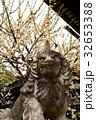 北野天満宮 狛犬と梅 32653388