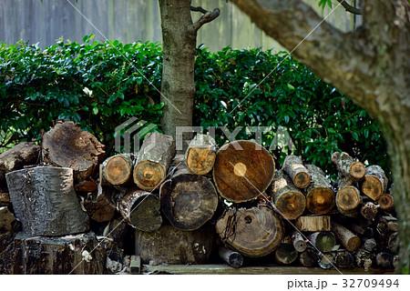 木材, 薪、 32709494