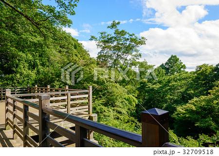 森の中の日本的なバルコニー 32709518