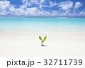 ビーチ 芽 海岸の写真 32711739