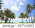 ヤシの木とビーチ 32711853