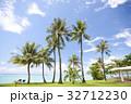 トロピカル ビーチ ヤシの写真 32712230