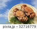 かに カニ 蟹の写真 32716779