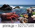 海の幸 海産物 海鮮類の写真 32717105