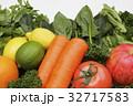 果実と野菜の集合 32717583