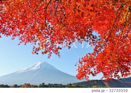 富士山と秋の紅葉 32720350