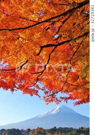 富士山と秋の紅葉 32720361
