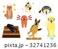 室内犬の悩み 32741236