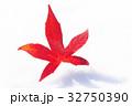 紅葉 雪 葉の写真 32750390