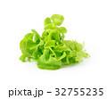 サラダ サラダ グリーンの写真 32755235