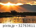 瓢湖 白鳥 渡り鳥の写真 32763611