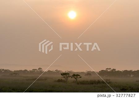 釧路湿原の夏の朝1 32777827