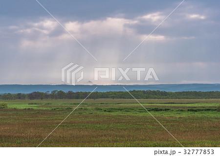 雨が止んだ夏の湿原2 32777853