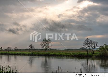 雨が止んだ夏の湿原6 32777857