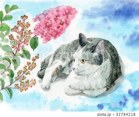 猫と百日紅の花 32784218