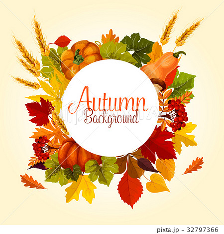 Autumn poster of vector leaf fall and harvest 32797366