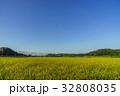 風景 田んぼ 夏の写真 32808035