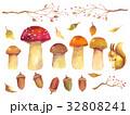 秋 水彩 水彩画のイラスト 32808241