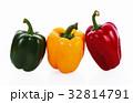 ピーマン グリーン 緑の写真 32814791