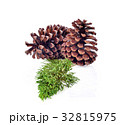 Dry leaves, pine cones on white background 32815975