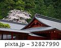 二荒山神社 日光二荒山神社 桜の写真 32827990