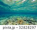 海中 海 水中写真の写真 32828297