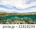 海中 海 水中写真の写真 32828299