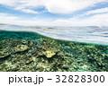 海中 海 水中写真の写真 32828300