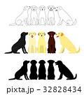 犬 ラブラドールレトリバー グループのイラスト 32828434