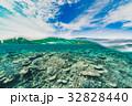 海中 海 珊瑚礁の写真 32828440
