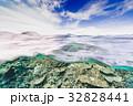海中 海 珊瑚礁の写真 32828441