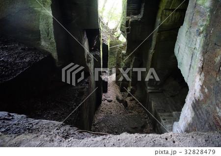 7月 カノー伝説・石切場跡内部17南伊豆 32828479