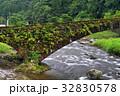 川 橋 石橋の写真 32830578