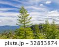 夏 動物 アジア圏の写真 32833874