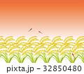 稲穂畑 32850480