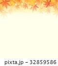 秋のイメージ 輝く紅葉と落ち葉 32859586