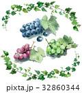 ぶどう3種類と蔦のフレーム 32860344